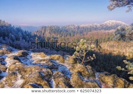 elbe sandstone mountains in winter teichstein stock photo © lianem