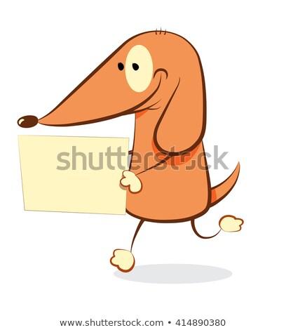 Vicces kutya üres tábla barátságos rajz sétál Stock fotó © pcanzo