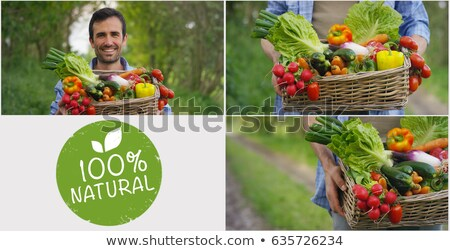 farmers hands photo collage on wooden background stock photo © stevanovicigor
