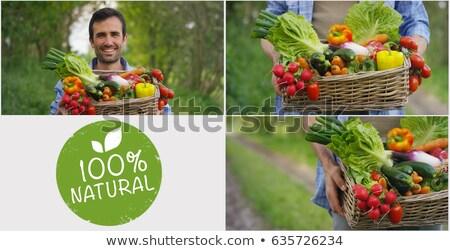 農民 手 写真 コラージュ 木製 男 ストックフォト © stevanovicigor
