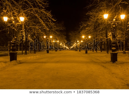 Christmas city pillar lamp snow Stock photo © romvo