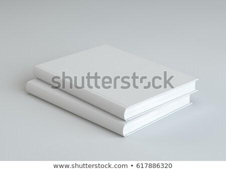 iktatókönyv · letöltés · gomb · szabad · termék · brosúra - stock fotó © is2
