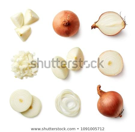 Сток-фото: лука · изолированный · белый · вектора · овощей · набор