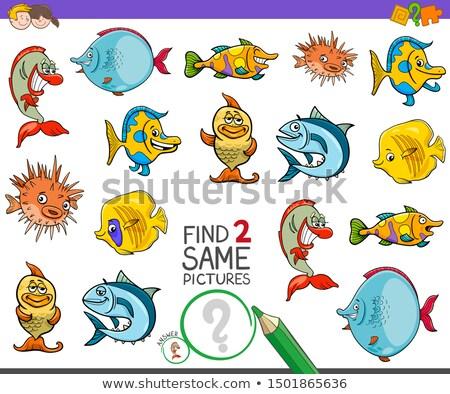 Encontrar dois animais marinhos jogo crianças Foto stock © izakowski
