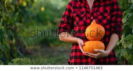 красивая · девушка · красочный · свежие · овощи · рук · Sweet - Сток-фото © dash