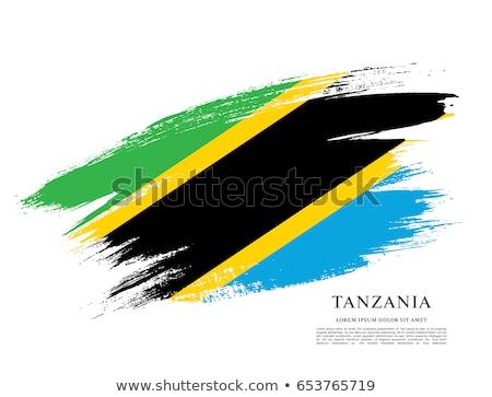 Tanzânia bandeira isolado branco tridimensional tornar Foto stock © daboost
