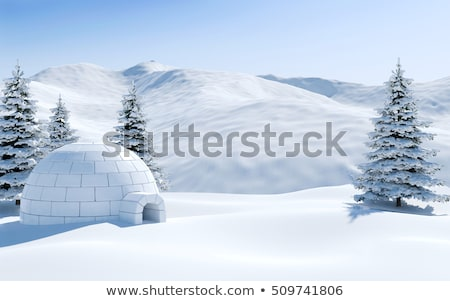 Igloo in the winter mountains Stock photo © Kotenko