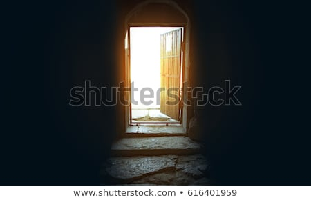 Door opened from an empty room outside Stock photo © manaemedia