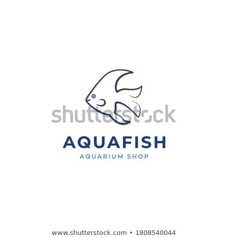 Couleur vintage aquarium magasin poissons icônes Photo stock © netkov1