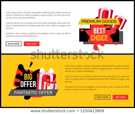 Premium Goods and Best Choice Blots on Tags Vector Stock photo © robuart