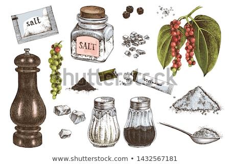 Pepper Spice Mill Kitchenware Color Vector Stock photo © mart
