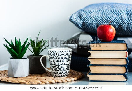Vase Standing on Table, Books and Cup Interior Stock photo © robuart