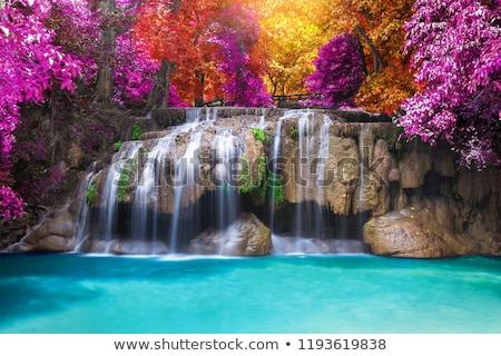 çağlayan · Tayvan · bahar · çim · güzellik · yaz - stok fotoğraf © ansonstock