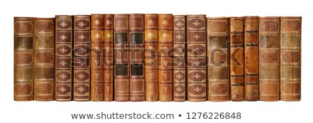 Antique books in a row Stock photo © duoduo