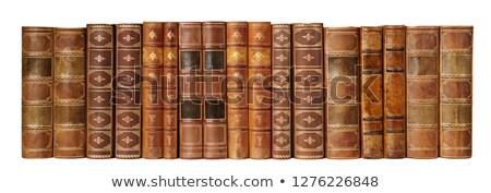 Antieke boeken rij ander boek Stockfoto © duoduo