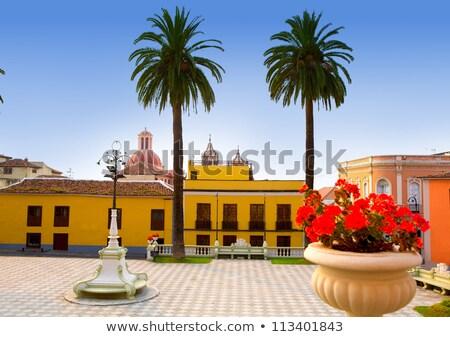 Ayuntamiento square in La Orotava Tenerife Stock photo © lunamarina