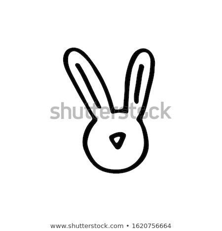 white bunny Stock photo © drizzd