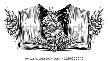 rose printed on the pages of an open old book stock photo © lunamarina