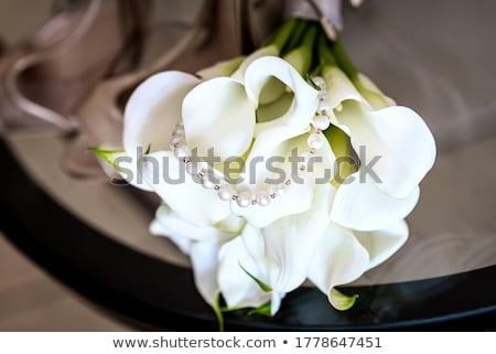 Лилия · изолированный · белый · свадьба · красоту · листьев - Сток-фото © taden
