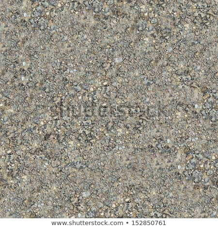 Seamless Texture of Wet Dirt Country Road. Stock photo © tashatuvango