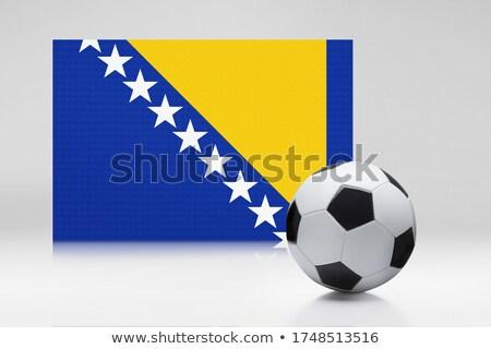 bandera · Bosnia · Herzegovina · aislado · blanco - foto stock © mikhailmishchenko
