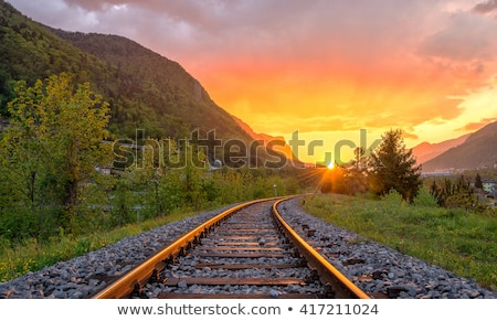 Evening railroad tracks Stock photo © skylight