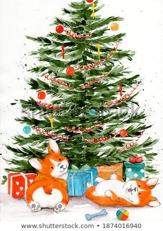 2 · オレンジ · クリスマス · 緑 · 孤立した - ストックフォト © peterpolak