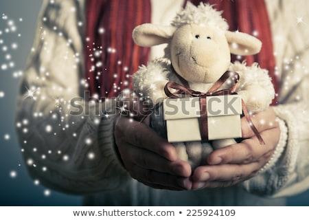 2015. Lamb in a gift box Stock photo © orensila