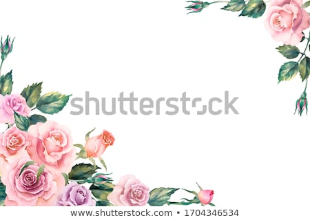 Vintage Background Framed with Corner Border Flowers stock photo © Luseen