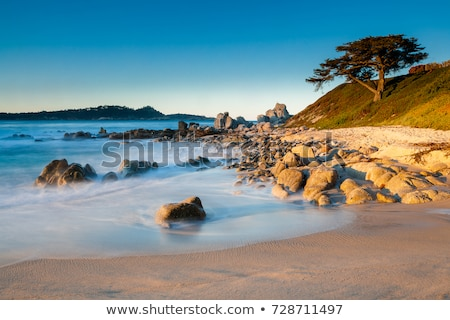 Stones ocean beach. Carmel, California Stock photo © iriana88w