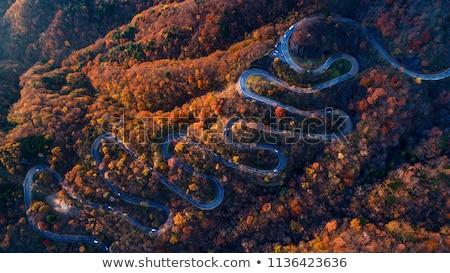 道路 · 孤立した · 実例 · 旅行 · 黒 - ストックフォト © bluering