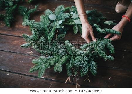 Foto d'archivio: Stagionale · foglia · verde · ghirlanda · rustico · bianco · legno