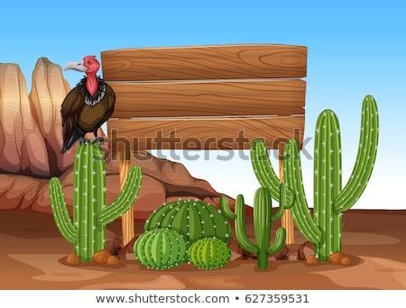 Dögkeselyű kaktusz fa tábla illusztráció természet háttér Stock fotó © bluering