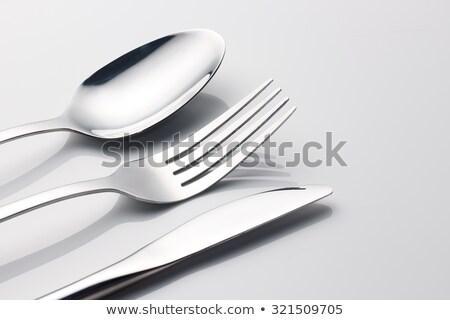 Kitchen stainless knife Stock photo © mady70