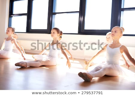 Young dancer practising in a dance studio Stock photo © dash