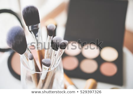 Professional makeup brushes collection, new make-up tools set on Stock photo © manera
