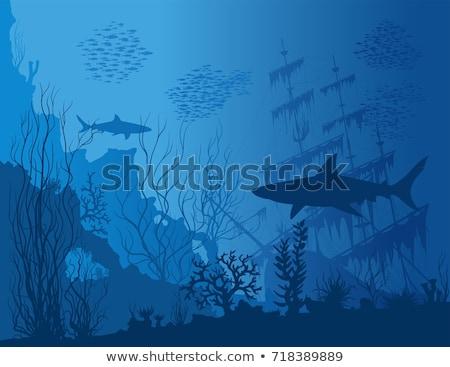 Underwater background sunken ship, vector illustration Stock photo © carodi