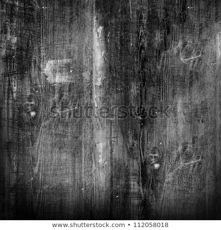 Black and white texture of weathered wood Stock photo © IMaster