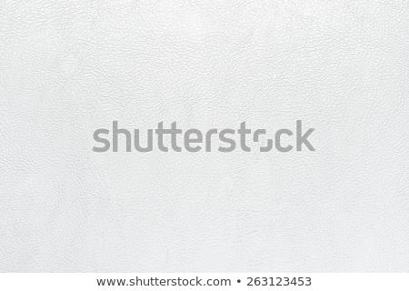 Blanco artificial cuero textura piel patrón Foto stock © stevanovicigor
