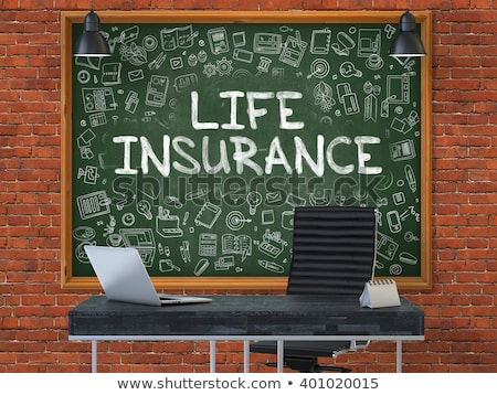 Insurance - Hand Drawn on Green Chalkboard. Stock photo © tashatuvango