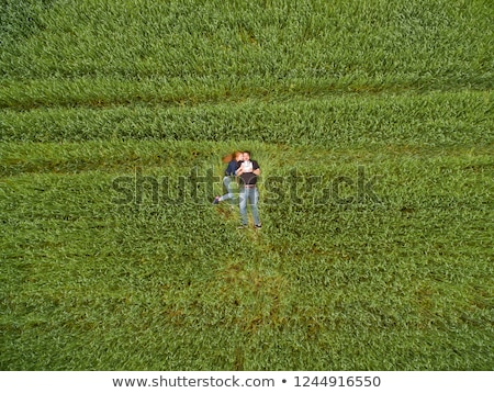 Couple laying down in a wheat field Stock photo © IS2