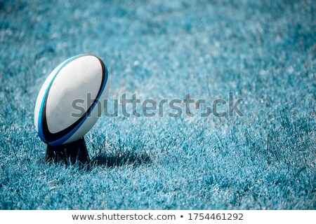 Bruised rugby players Stock photo © IS2