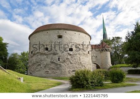 Vieux médiévale canon bois roues maison Photo stock © grafvision