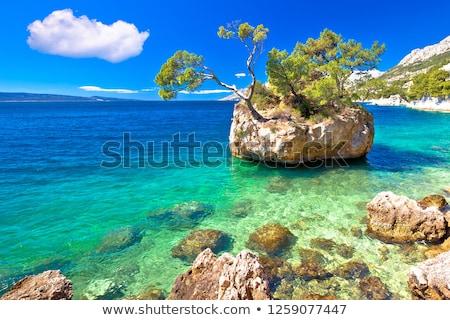 Foto stock: Idílico · playa · agua · mar · montana · palma