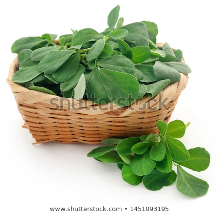 Fenugreek leaves with seeds and oil Stock photo © bdspn