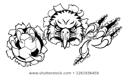 Soccer Ball Eagle Claw Talons Ripping Background Stock photo © Krisdog