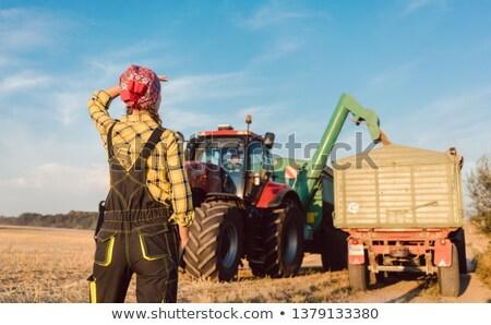 Farm woman monitoring progress of the harvest on site Stock photo © Kzenon
