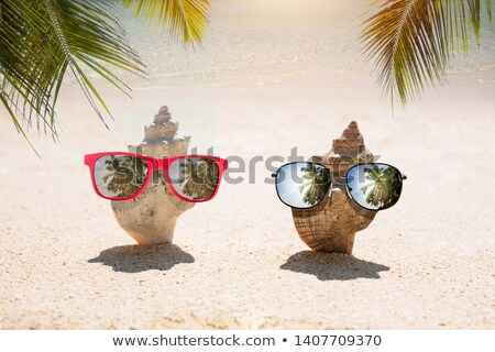 Conch Dig In Sand With Sunglasses At Beach Stock photo © AndreyPopov