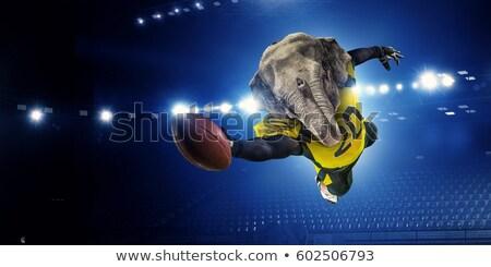 Elephant American Football Ball Sports Mascot Stock photo © Krisdog