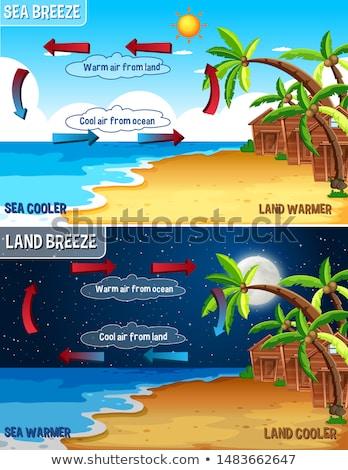Bilim poster dizayn deniz arazi esinti Stok fotoğraf © bluering